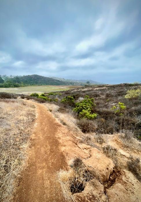 Stonebridge Trail at San Elijo Lagoon Ecological Reserve